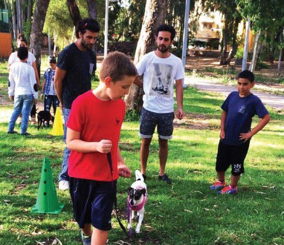 סדנת אילוף כלבים (צילום: דוברות עיריית מודיעין מכבים רעות)