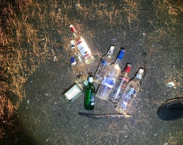 חלק מבקבוקי האלכוהול שנמצאו במסיבה (צילום: דוברות המשטרה)