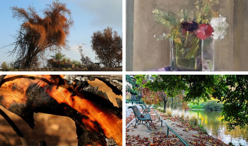 """מתוך התערוכות """"בניחוח פריז"""" ו""""מחול האש"""" (צילומים: יואל תמנליס, שרה גולד, האמנית אתי יעקבי)"""