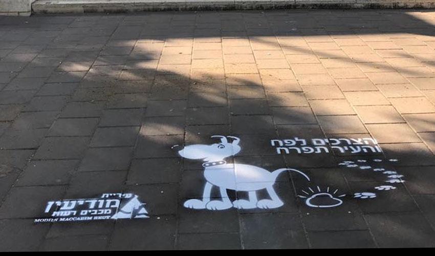 חדש על המדרכות ברחבי העיר: כיתובים לעידוד איסוף צרכי הכלבים