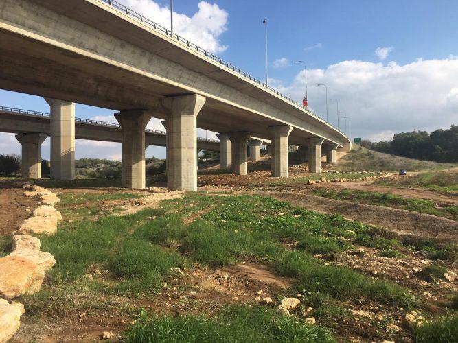 נטיעת עצים בנחל ענבה (צילום: דוברות עיריית מודיעין מכבים רעות)