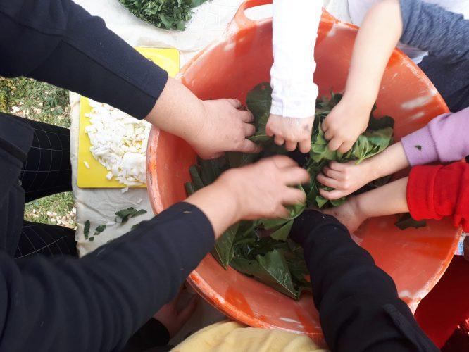 פיקניק עודפים לציון יום צמצום בזבוז מזון במודיעין (צילום: דוברות עיריית מודיעין מכבים רעות)