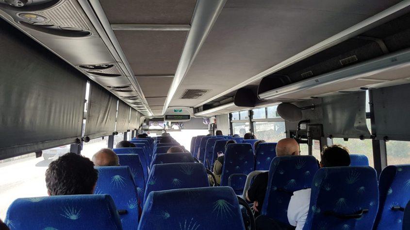 תחבורה ציבורית במודיעין (צילום: פרטי)