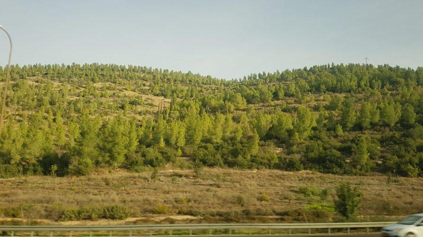 רכס משלטים (צילום: בן סימנובסקי)
