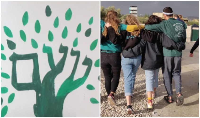 """תנועת הנוער נוע""""ם (צילום: דוד עז)"""