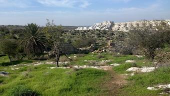 מבט מהגבעות הדרומיות לשכונת מוריה (צילום: טלי קדמי, החברה להגנת הטבע)