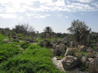 עתיקות בגבעות הדרומית (צילום: רותם זכאי)