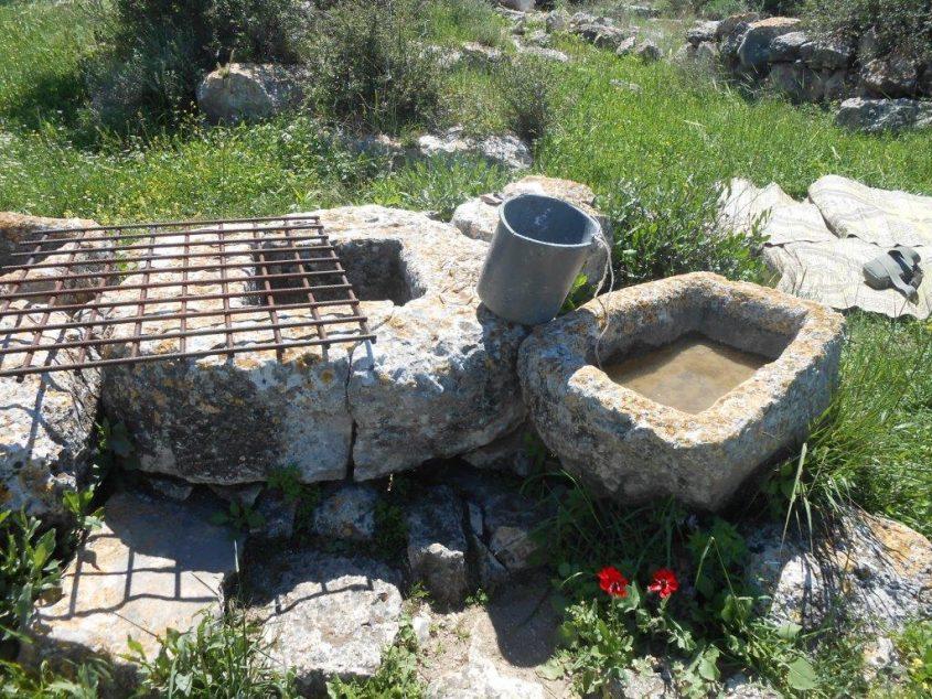 בור מים בגבעת שר (צילום: טלי קדמי, החברה להגנת הטבע)