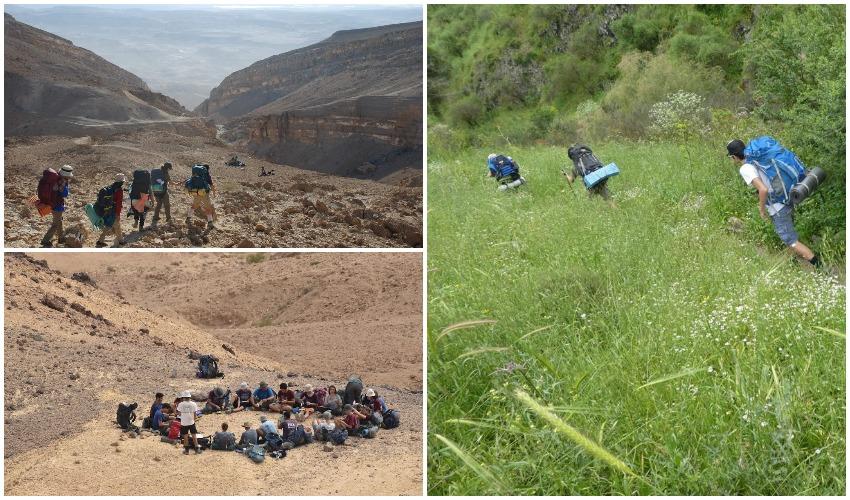 חוגי הסיירות של החברה להגנת הטבע (צילומים: מאיה פורת, נעם בן יעקב)