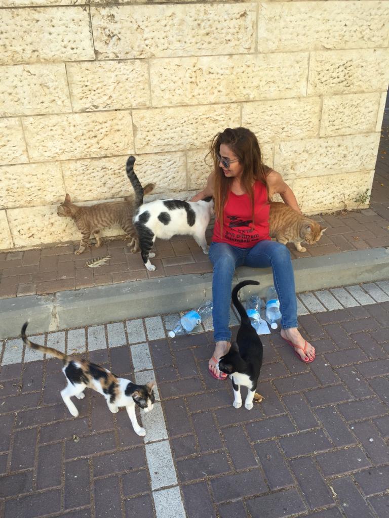 אוה אהרונוף עם חתולי הקהילה במודיעין (צילום: פרטי)