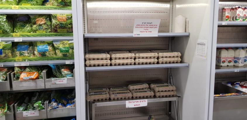 מדף הביצים בסופרמרקט (צילום: פרטי)