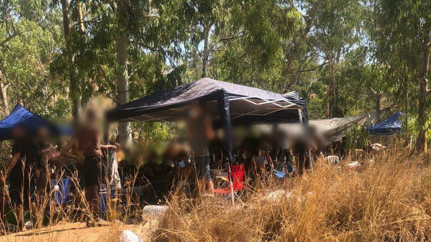 מסיבת היער ביער בן שמן בניגוד להגבלות הקורונה (צילום: דוברות המשטרה)