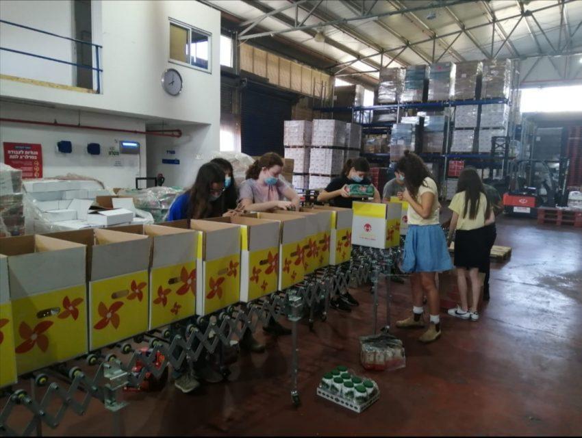 נערות ונערים אורזים חבילות מזון לשעת הצורך (צילום: דוברות עיריית מודיעין מכבים רעות)